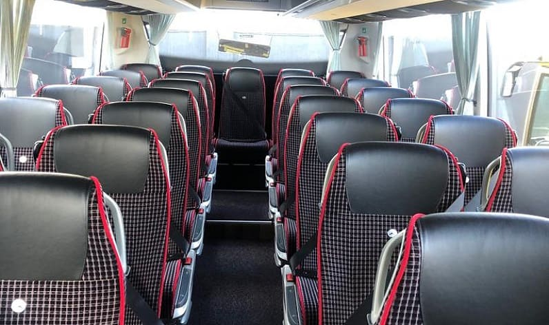 Germany: Coach booking in Saxony in Saxony and Döbeln